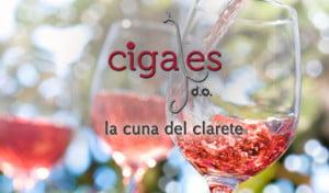 gastronomia y vinos