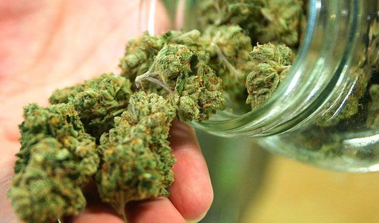 cannabis en la comida