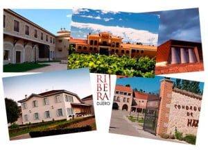 turismo, vino y gastronomia