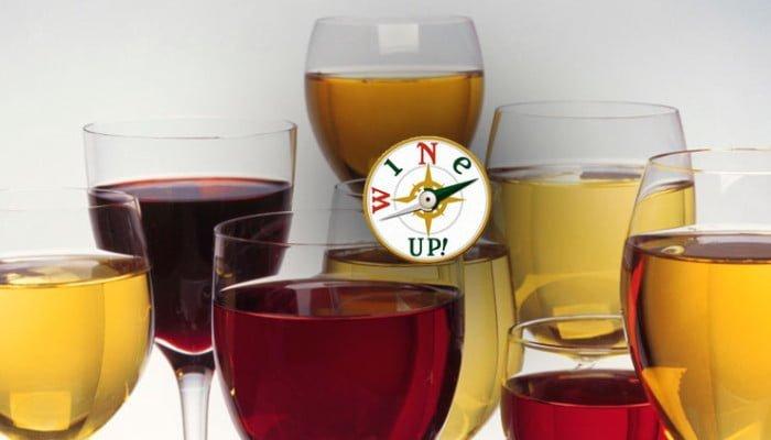guias de vinos