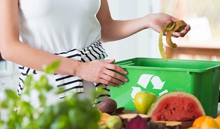 sosrenibilidad con los alimentos